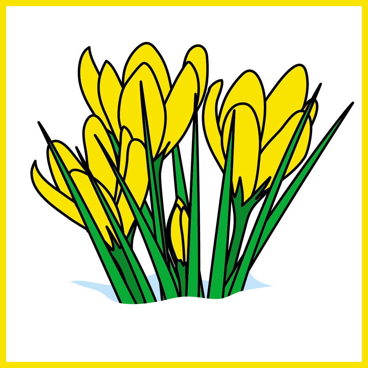crocus cartoon