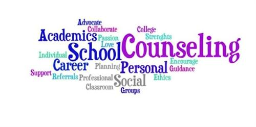 Advisement & Counseling / Why Middle School Counselors?